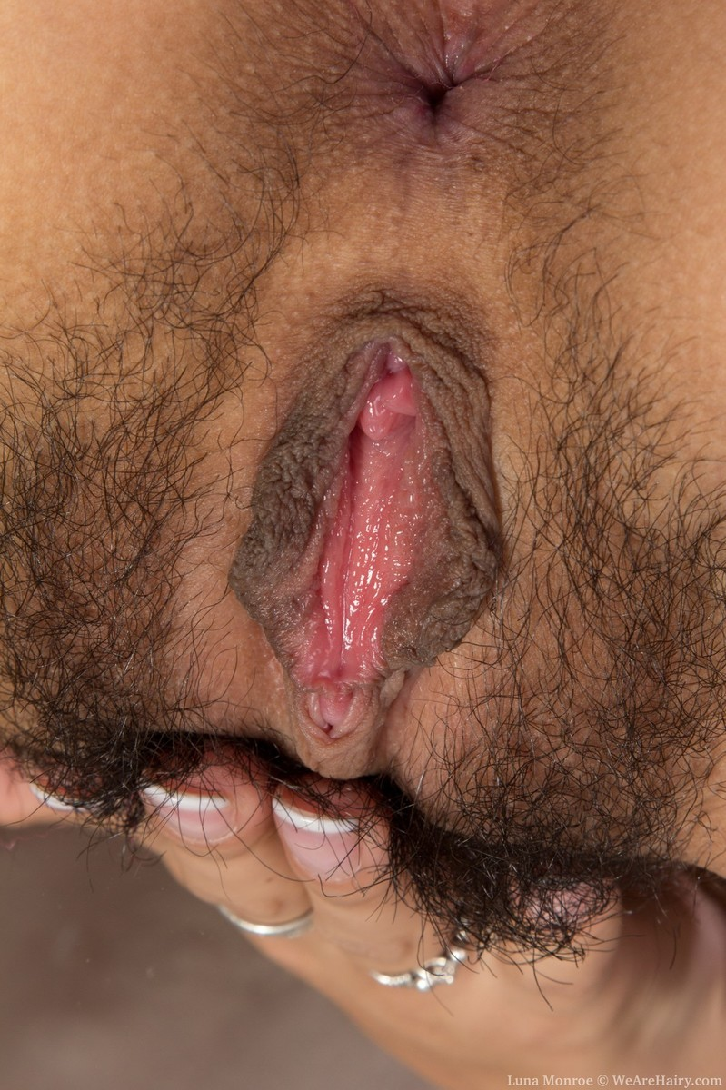 Hairy pussy being fucked